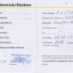 Паспорт B61TR