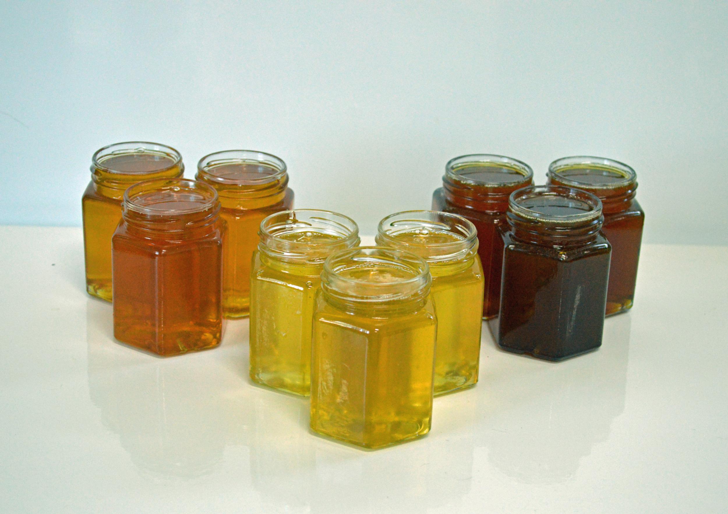 Обработка пчел в термокамере