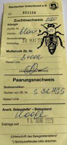 Паспорт Бакфаст F1 линия В(40)OR