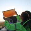 Сотовый мёд с пасеки