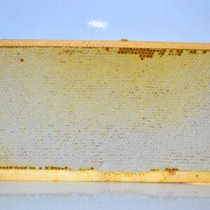 Мёд соты рамка